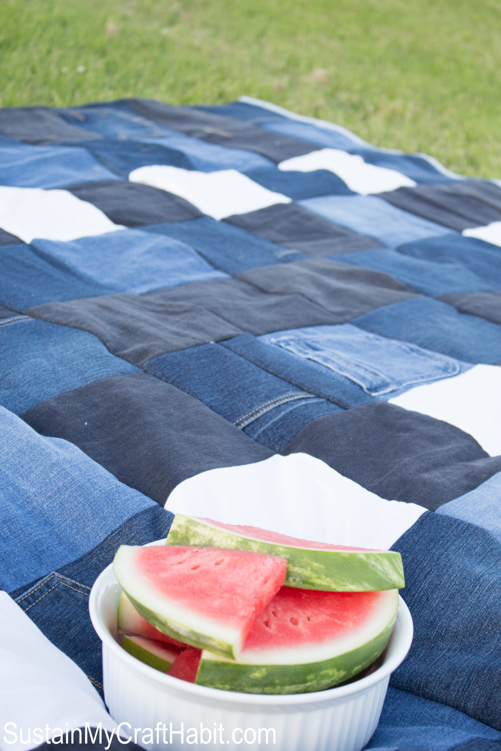 A bowl filled with watermelon resting on the new picnic blanket