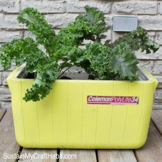 DIY Repurposed Cooler Planter