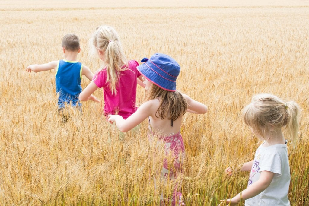 Children walking in a row through a field of golden wheat