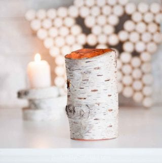 Birch Bark Votive Holder