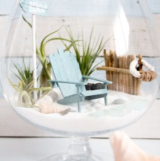 DIY Beachy Air Plant Mini Garden Terrarium