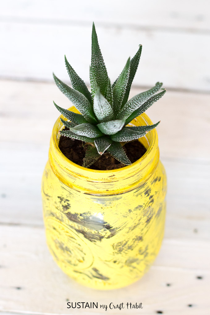 Make your own pineapple inspired succulent planter with a mason jar and some paint!