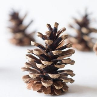 Clean your pine cones for crafts naturally with these simple steps.