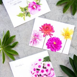 Free Printable Summer Flowers Greeting Cards