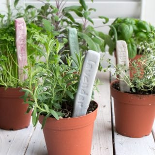 DIY Herb Garden Markers with Air Dry Easy-Sculpt Clay