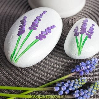 How to Make Painted Rocks: Grape Hyacinths