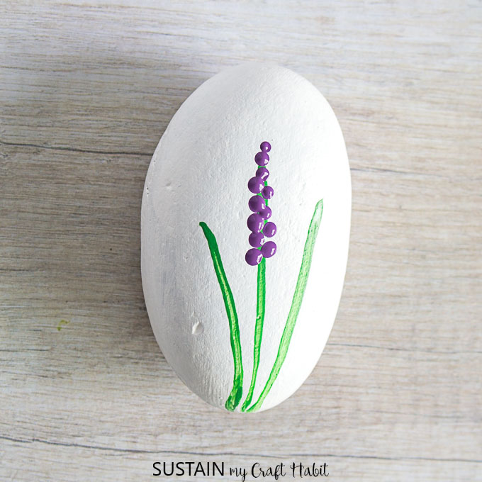 hyacinth painted rocks
