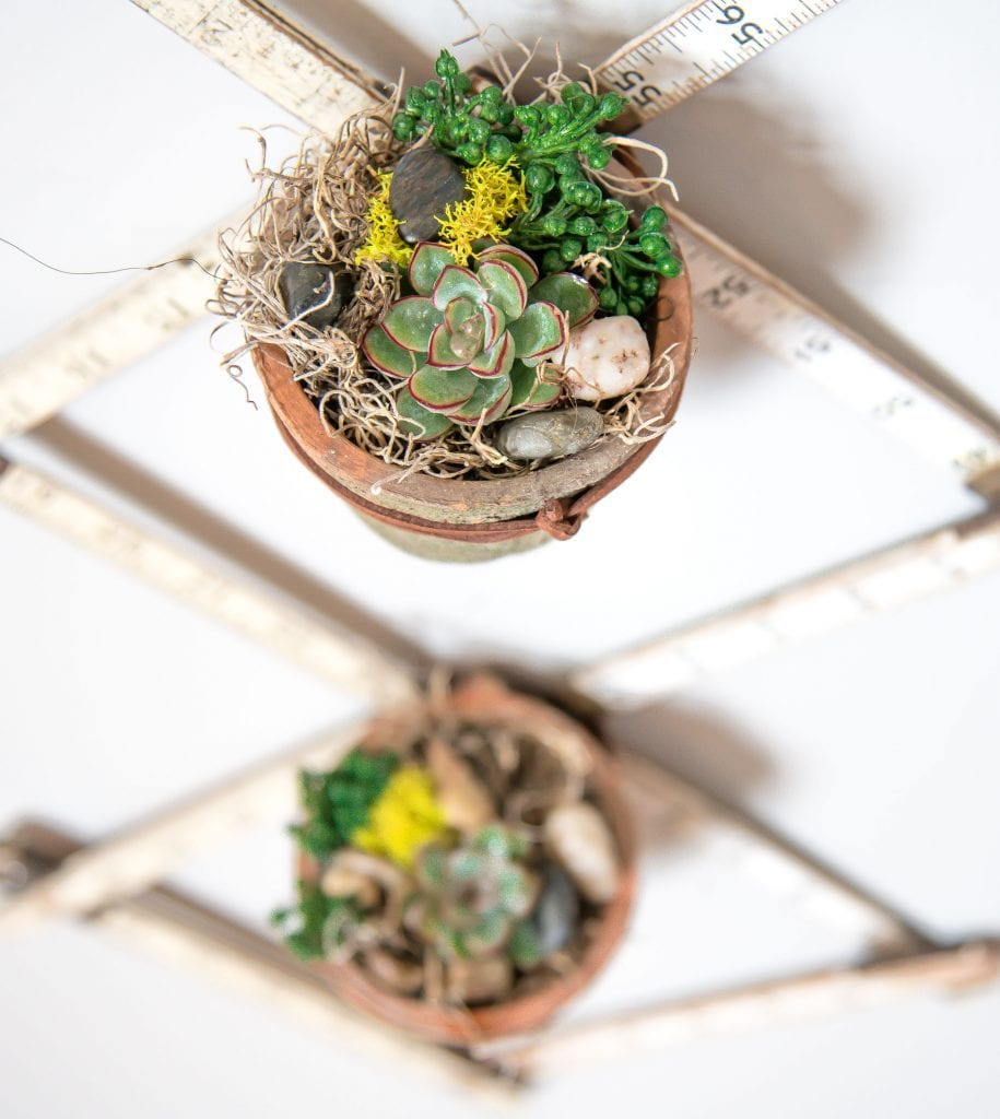 planter idea and succulent arrangements