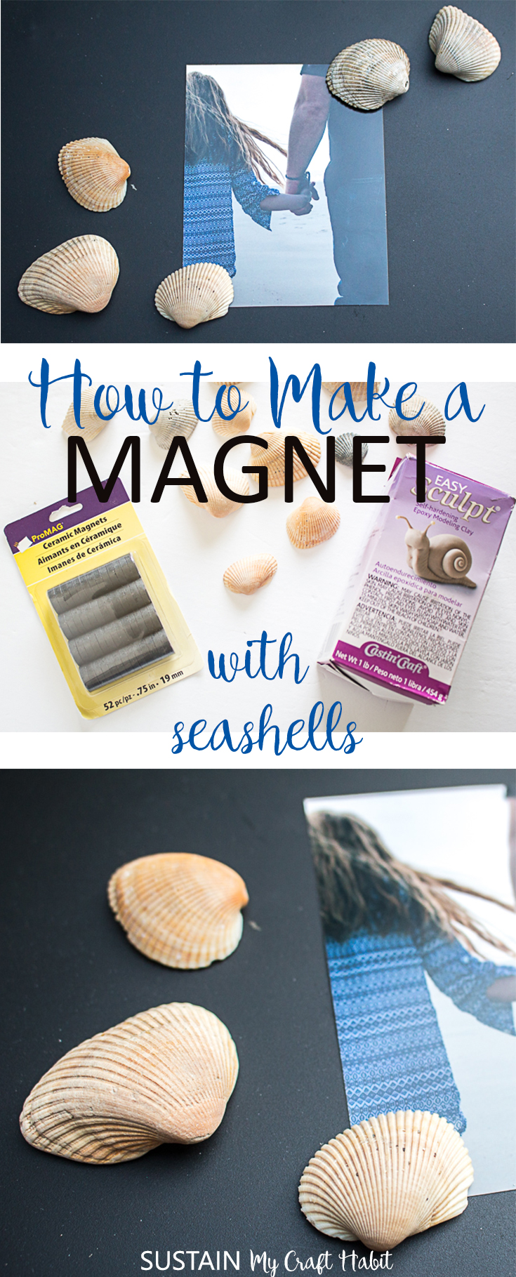 how to make a magnet with sea shells