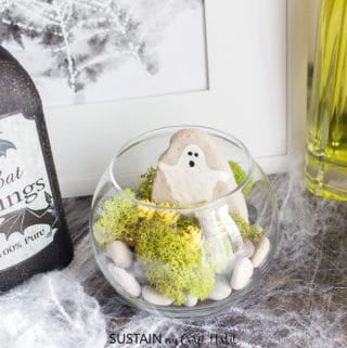 The Cutest DIY Halloween Terrarium