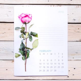 Free printable calendar featuring single-stem rose for February