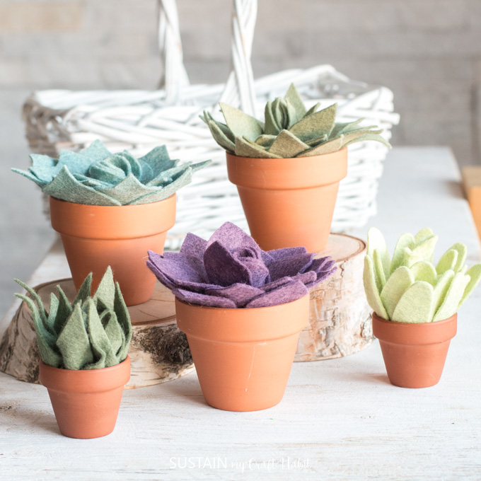 Multi-colored felt succulents in miniature terracotta clay pots