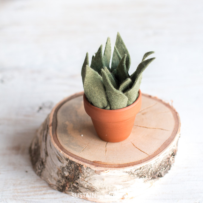 How To Make Potted Felt Succulents Sustain My Craft Habit