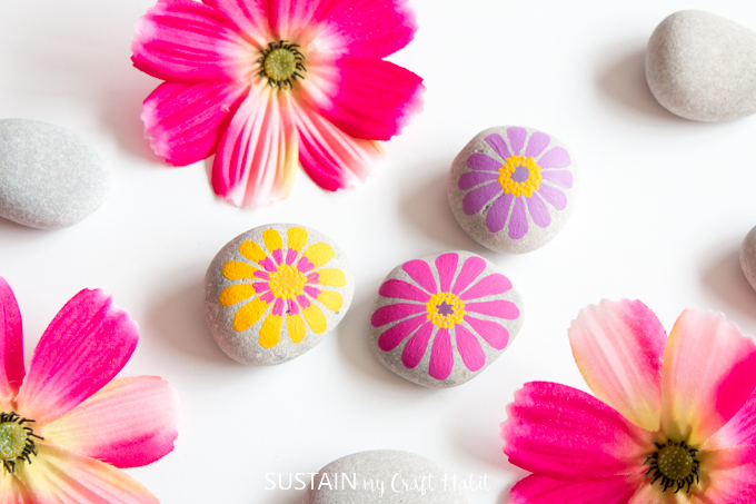 Pink, purple and yellow painted zinnia flower rocks amidst beach stones and fresh zinnia flower blooms on a white surface.