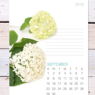 September 2019 free printable calendar page featuring hydrangeas