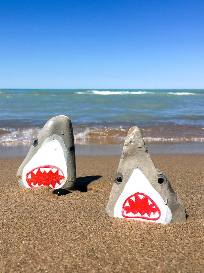 Two shark painted rocks on the beach with the lake in behind.