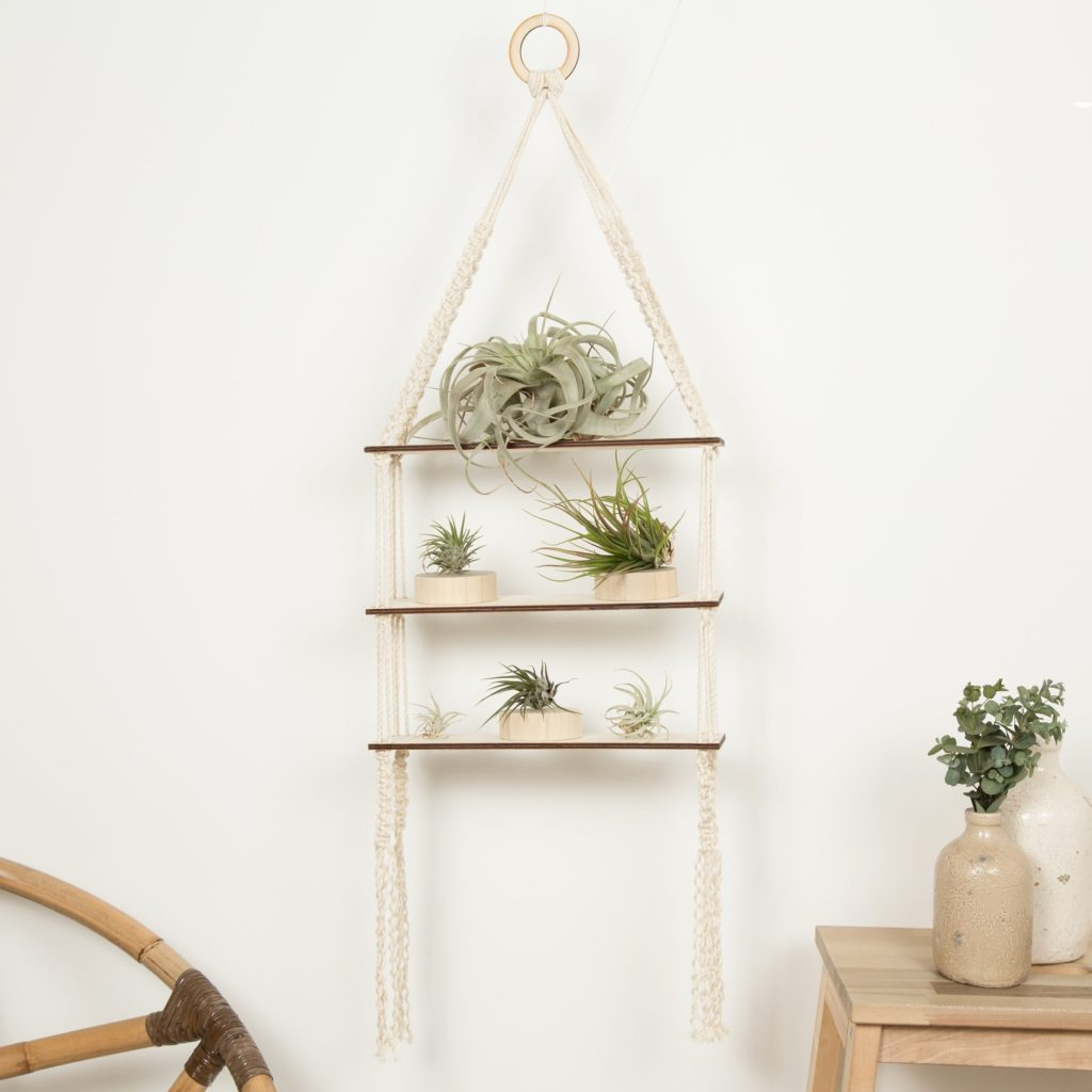 Completed 3 tier shelf styled with green air plants.