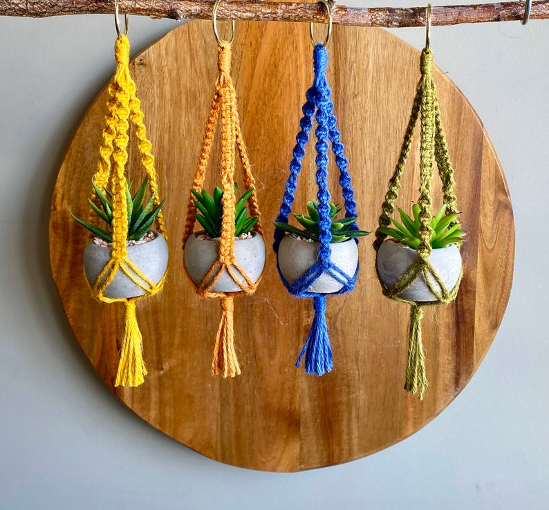 Four colorful miniature macrame plant hangers filled with potted succulents, hanging from a branch against a wood background.