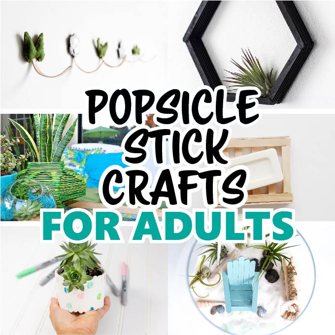 16+ Popsicle Stick Crafts for Adults!