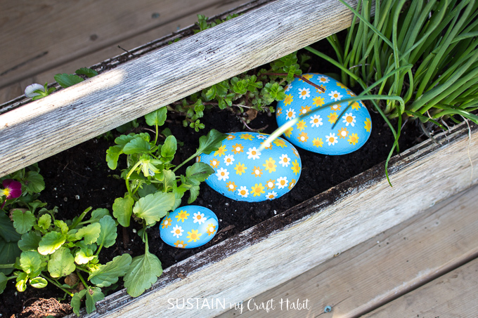 Three daisy flower painted rocks sitting in a garden bed.