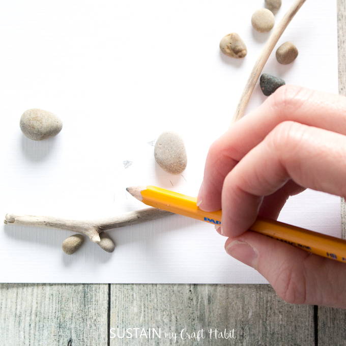 Using a pencil to faintly draw bird beaks and bird feet above the twig.