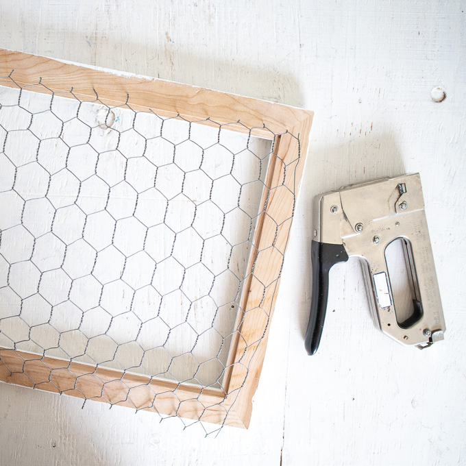 Cut chicken wire sized for the back of the picture frame.