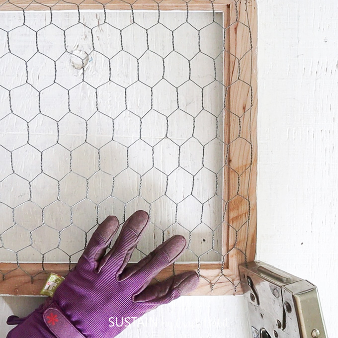 Stapling chicken wire onto the back of the picture frame.