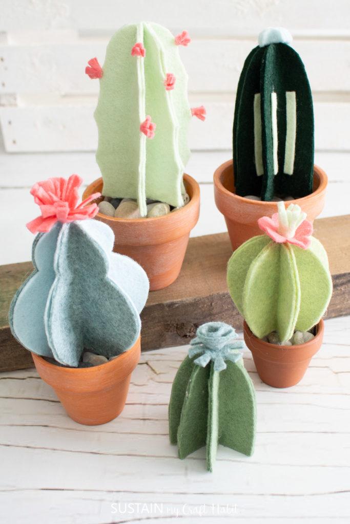 Different size felt cactus plants.