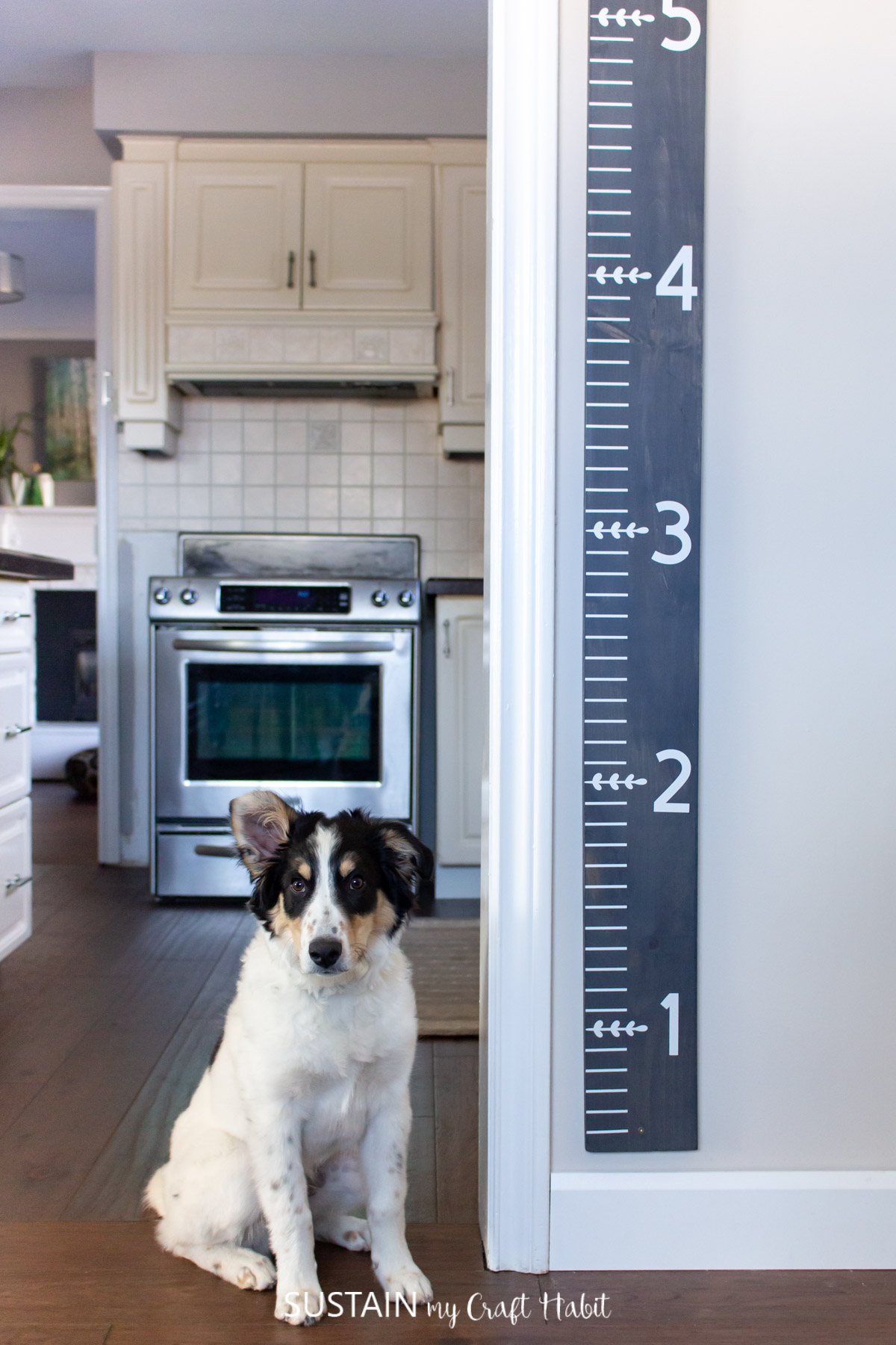 A DIY wood growth chart mounted on the wall by the kitchen. A dog is standing beside the simple woodworking project idea.
