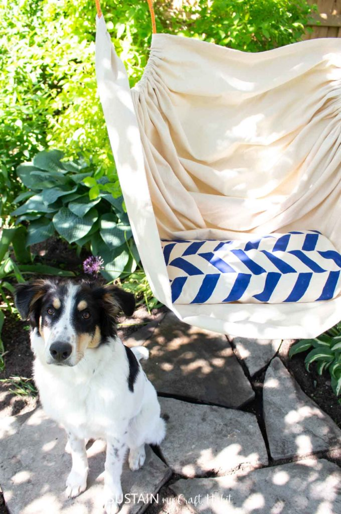 A dog sitting next to the hammock chair.