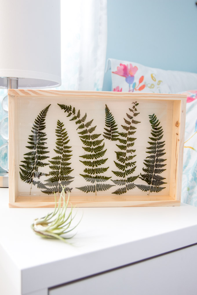 Fern art in a wood plaque sealed with Resin.
