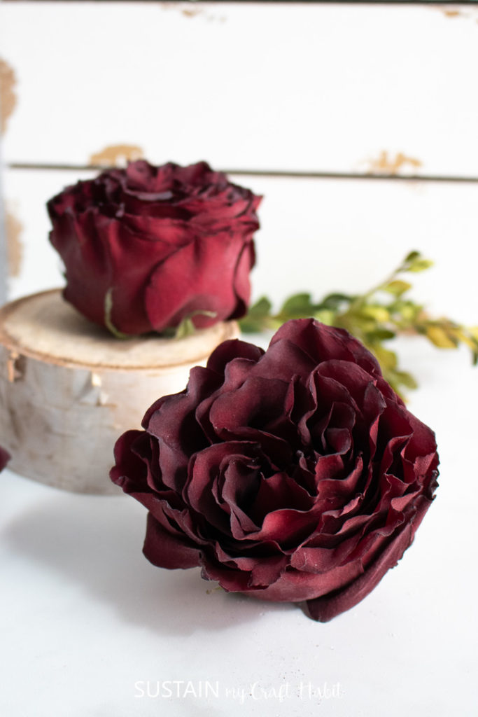 close up of a dried rose