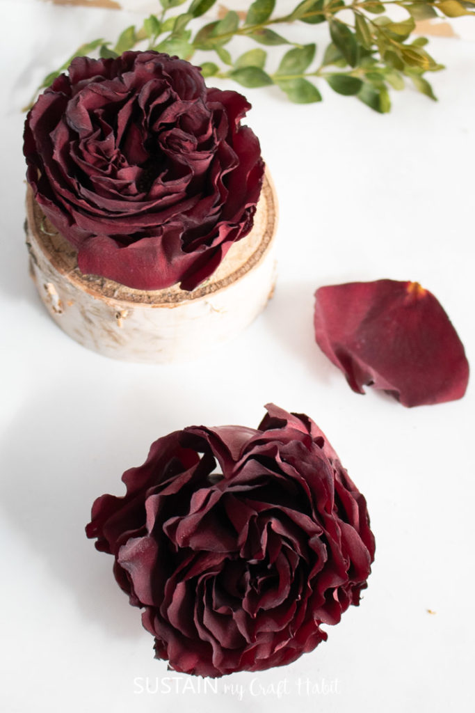 overview photo of dried roses