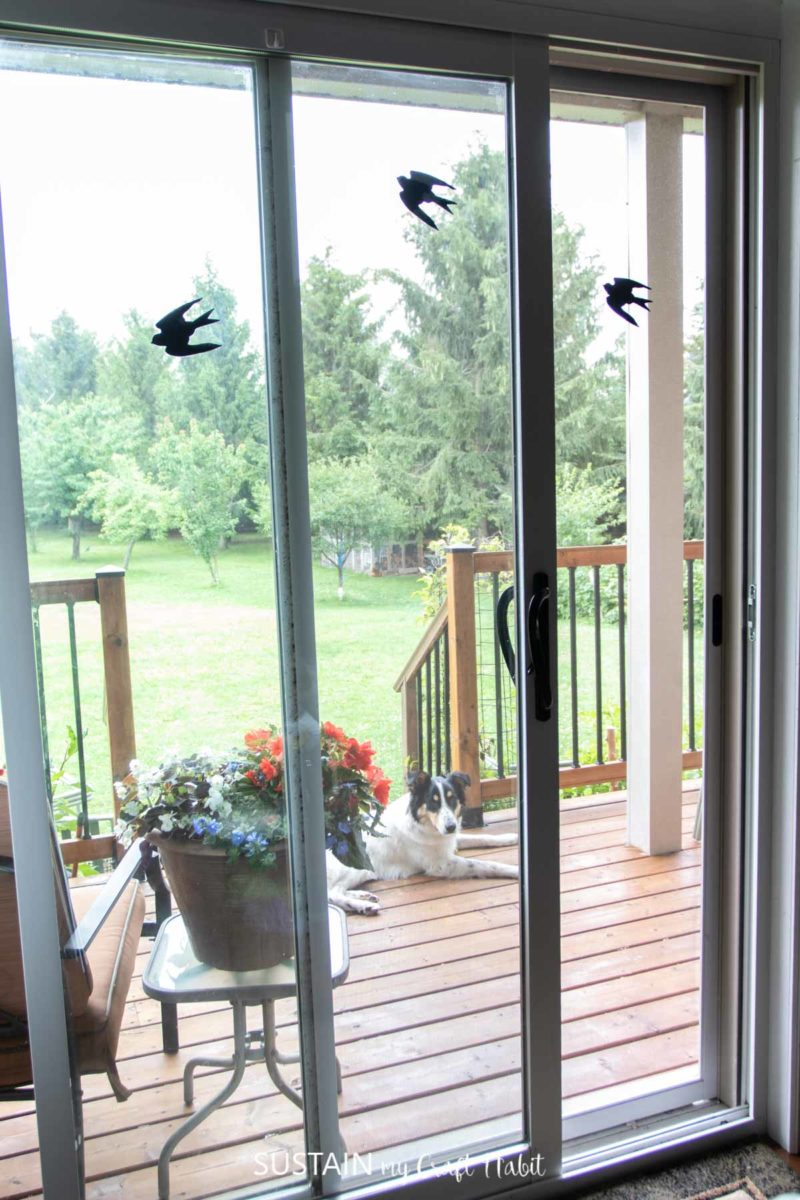 screen door whowing bird decals to keep birds from flying into windows