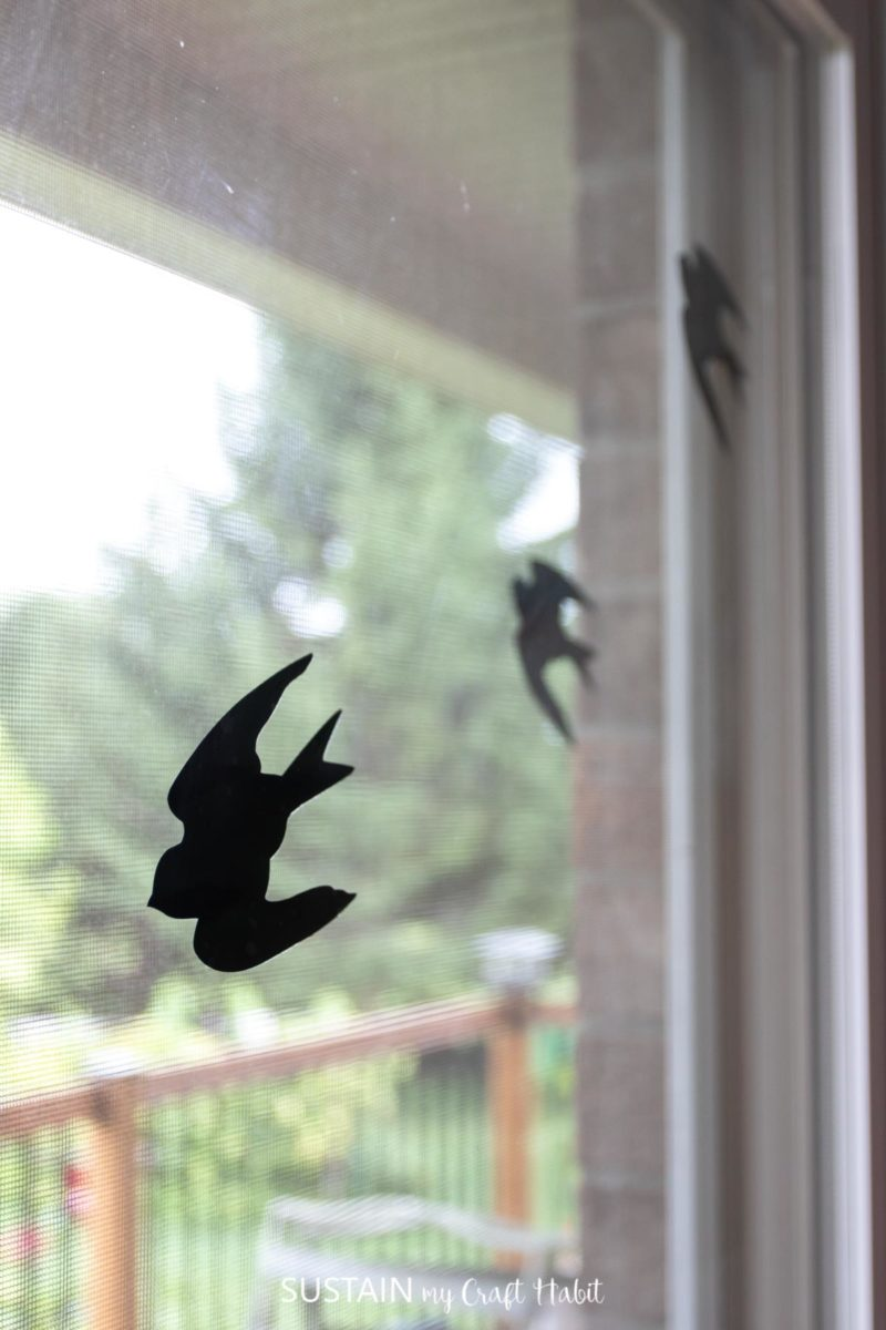 close up picture of vinyl bird decal placed on glass window