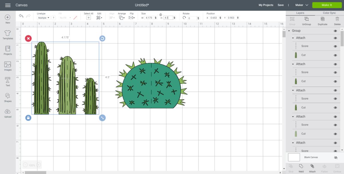 Resizing the cactus image in Cricut design space.