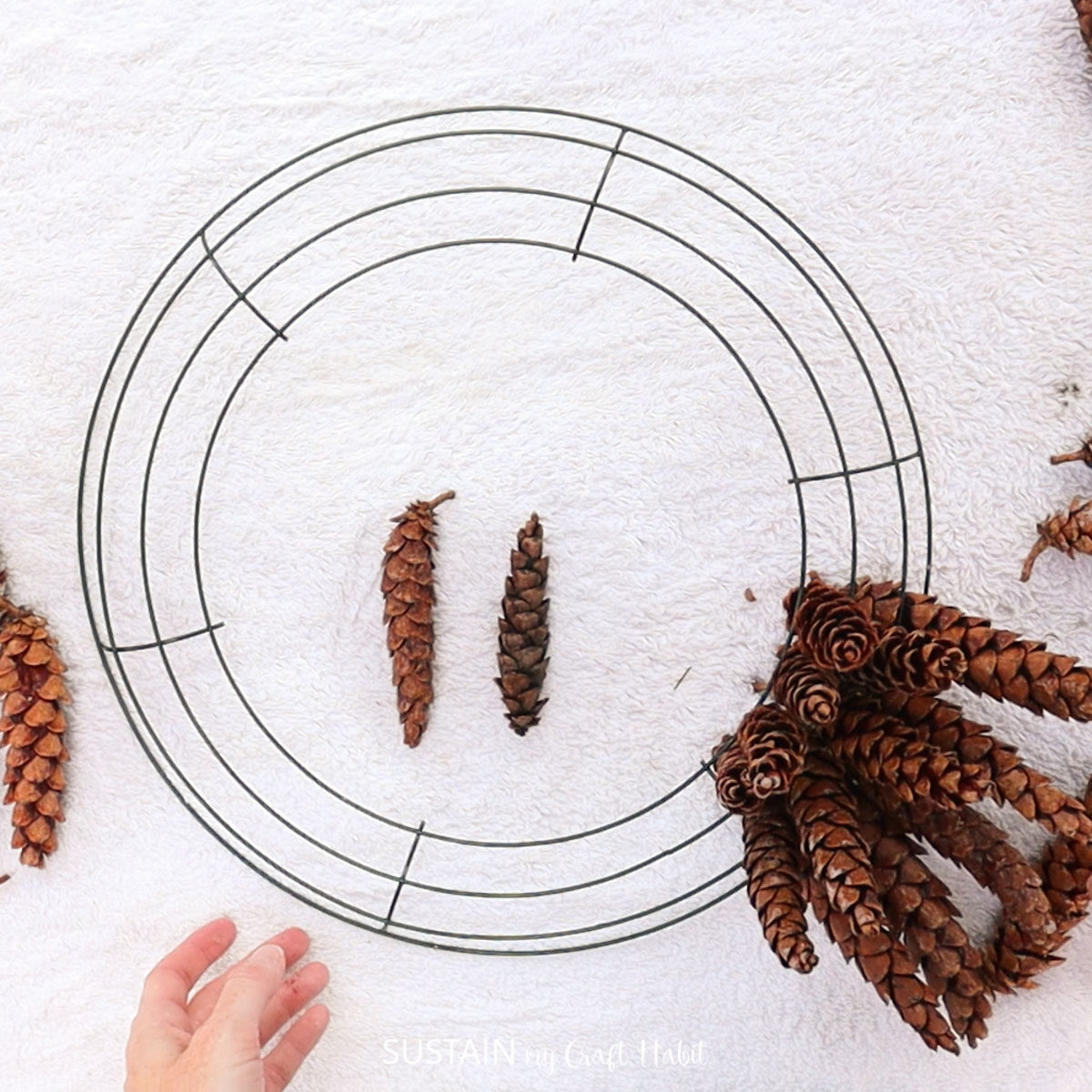 Adding more pinecones into the wreath form.
