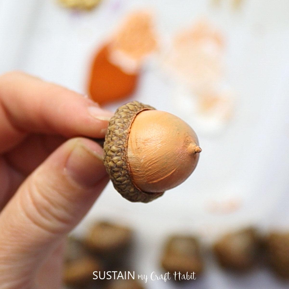 Painting half an acorn light orange.